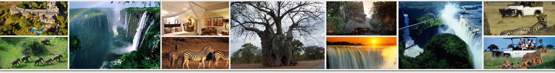 PageLines-ZimbabweHeader.jpg